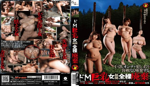 GVG-343 FukaYoshi Serina De M Busty Woman Rinkan Naked Disposal - Glory Quest