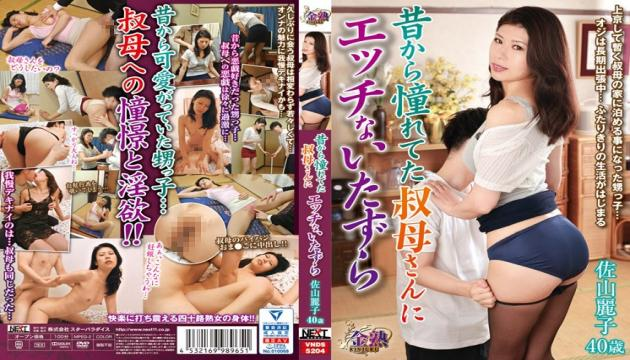 VNDS-5204 I Was Always Enamored With My Auntie, And Now I'm Playing Sexy Pranks On Her Reiko Sayama